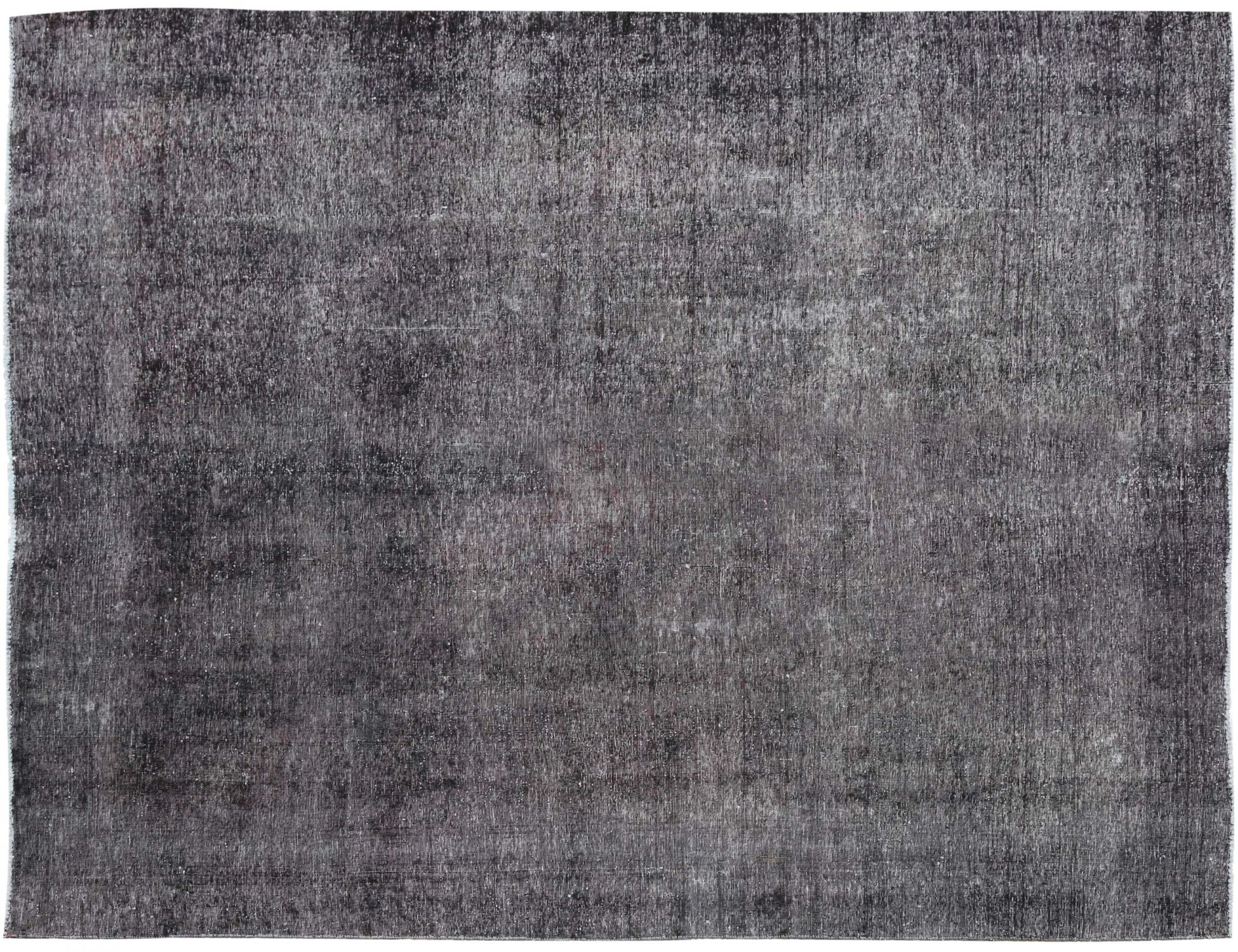 Vintage Carpet  black <br/>341 x 266 cm